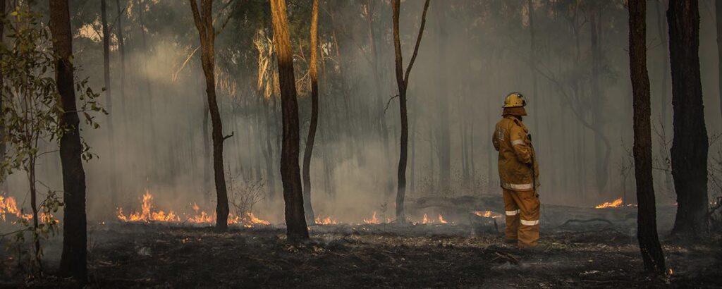 rls-hero-0006-Bushfires